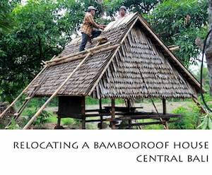 Porfolio Vertical Relocating a Bamboo Roof House Central Bali